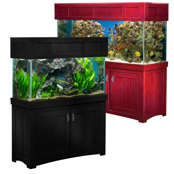 All Glass Aquariums Aquarium Concepts