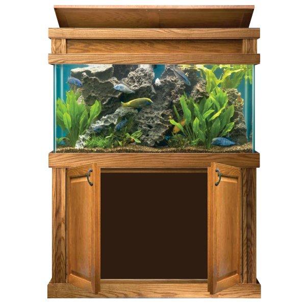 All Glass Aquariums Aquarium Concepts