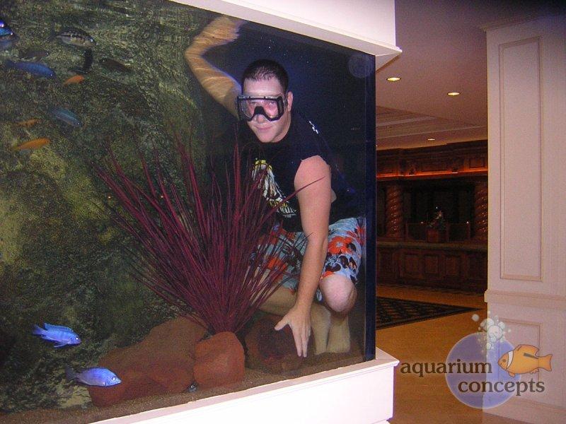 horseshoe-aquarium
