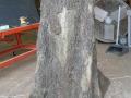 oaktreefull-jpg