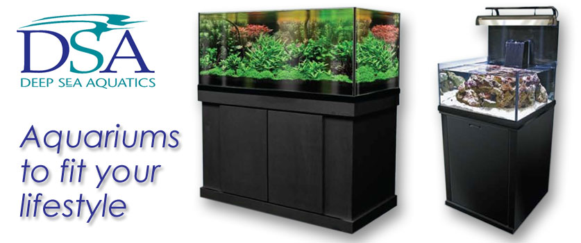 DSA Aquariums Shreveport
